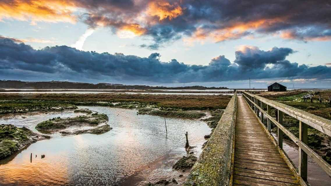 Newtown nature reserve could become swamped with visitors, volunteers have warned. Picture by Les Lockhart