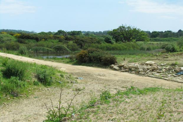 Brading Marsh site, which may be developed into holiday lodges.