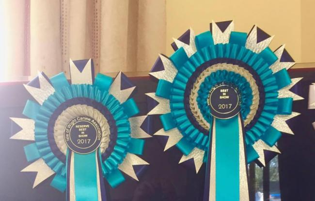 Top dogs win at Isle of Wight Canine Association match.